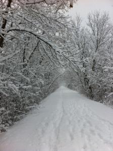 winter 2012 2